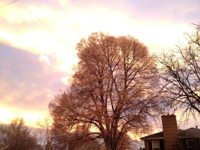 Morning Sky 6