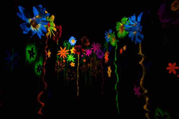 art-flowers-dark-colorful